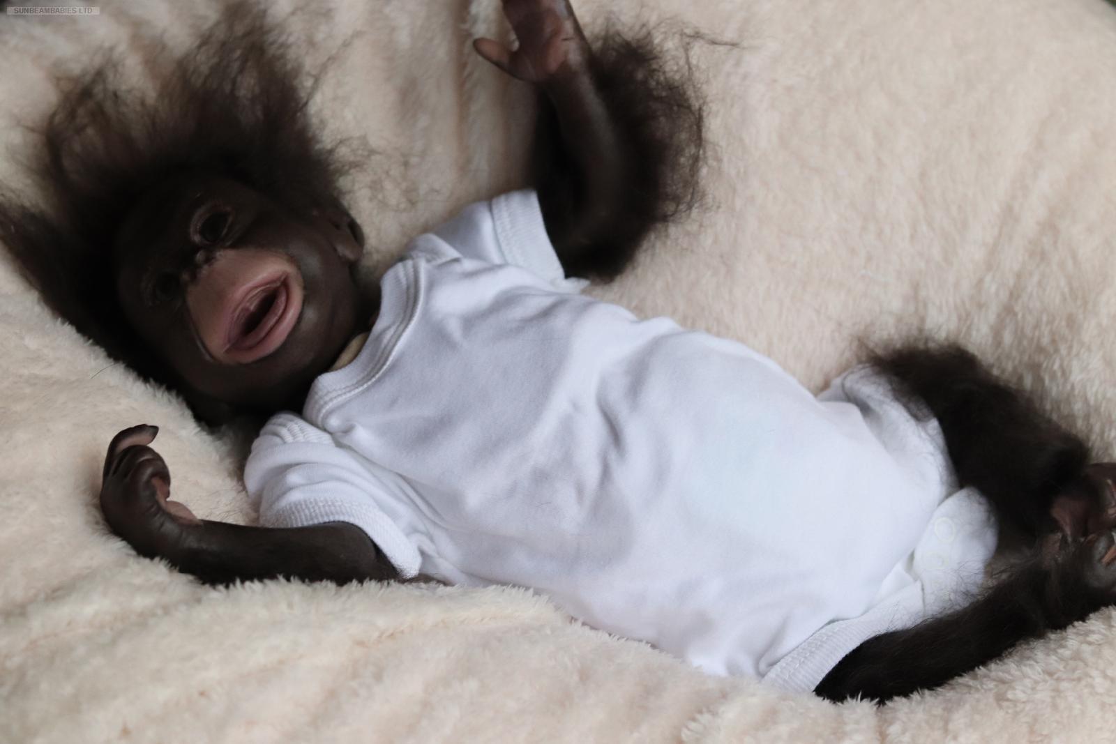 Détails Sur Enraciné Reborn, Brown Eyed Cici Singe Singe Chimpanzé Bébé  Gorille & Cadeau Gratuit Sac.!- Afficher Le Titre D'origine intérieur Jeux De Gorille Gratuit