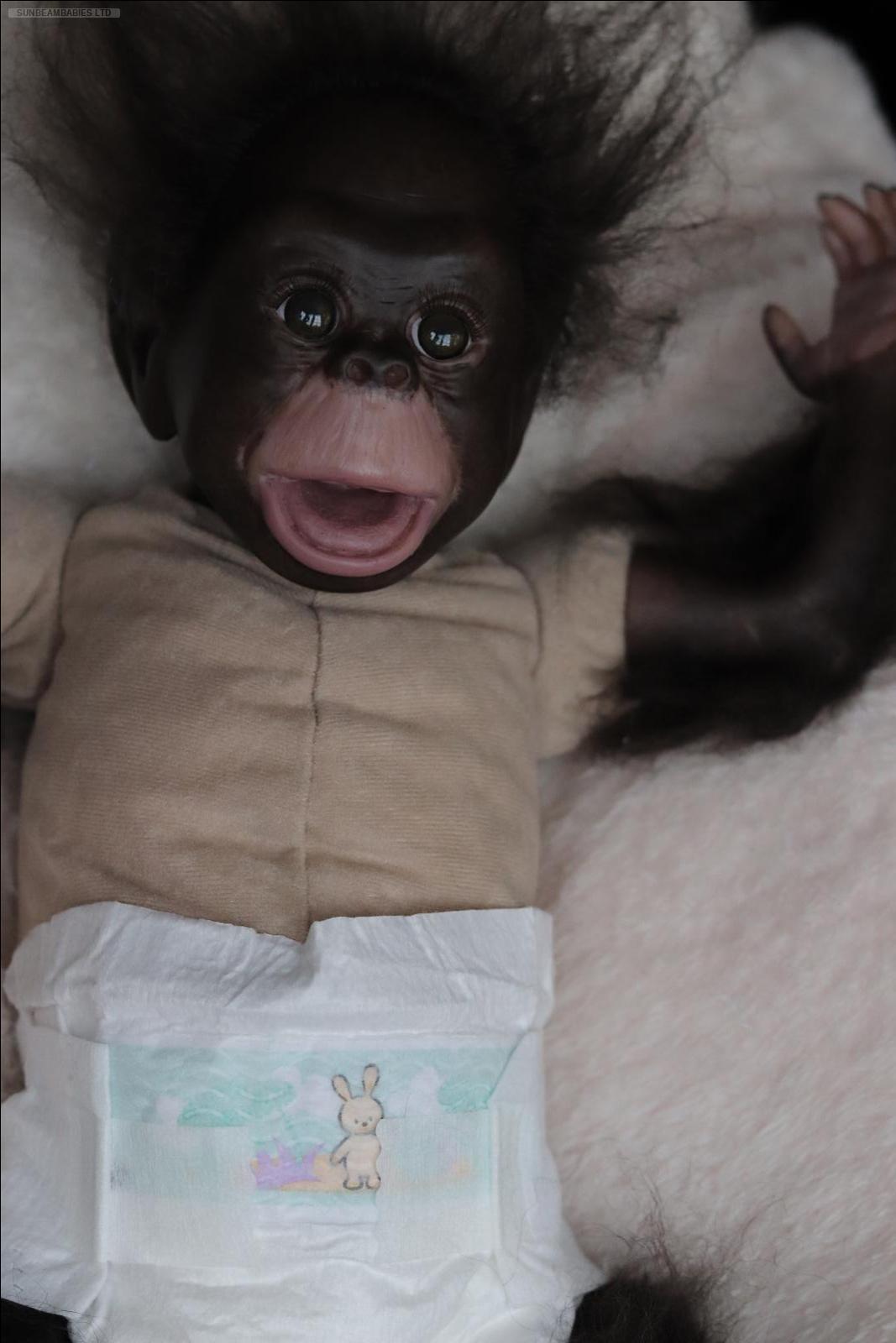 Détails Sur Enraciné Reborn, Brown Eyed Cici Singe Singe Chimpanzé Bébé  Gorille & Cadeau Gratuit Sac.!- Afficher Le Titre D'origine tout Jeux De Gorille Gratuit