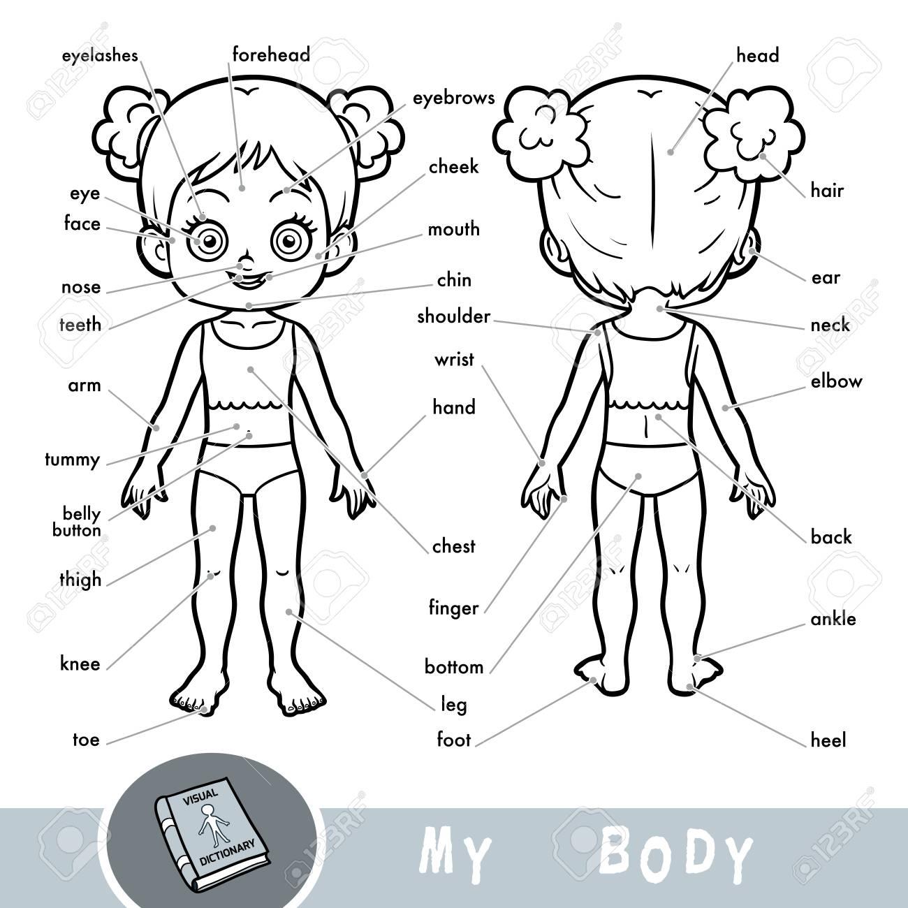 Dictionnaire Visuel De Dessin Animé Pour Enfants Sur Le Corps Humain. Les  Parties De Mon Corps Pour Une Fille. intérieur Le Corps Humain En Maternelle