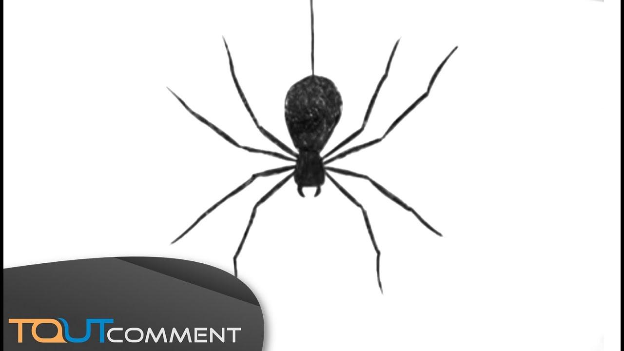 Draw A Spider Man / Comment Dessiner Une Araignée tout Dessiner Une Araignee