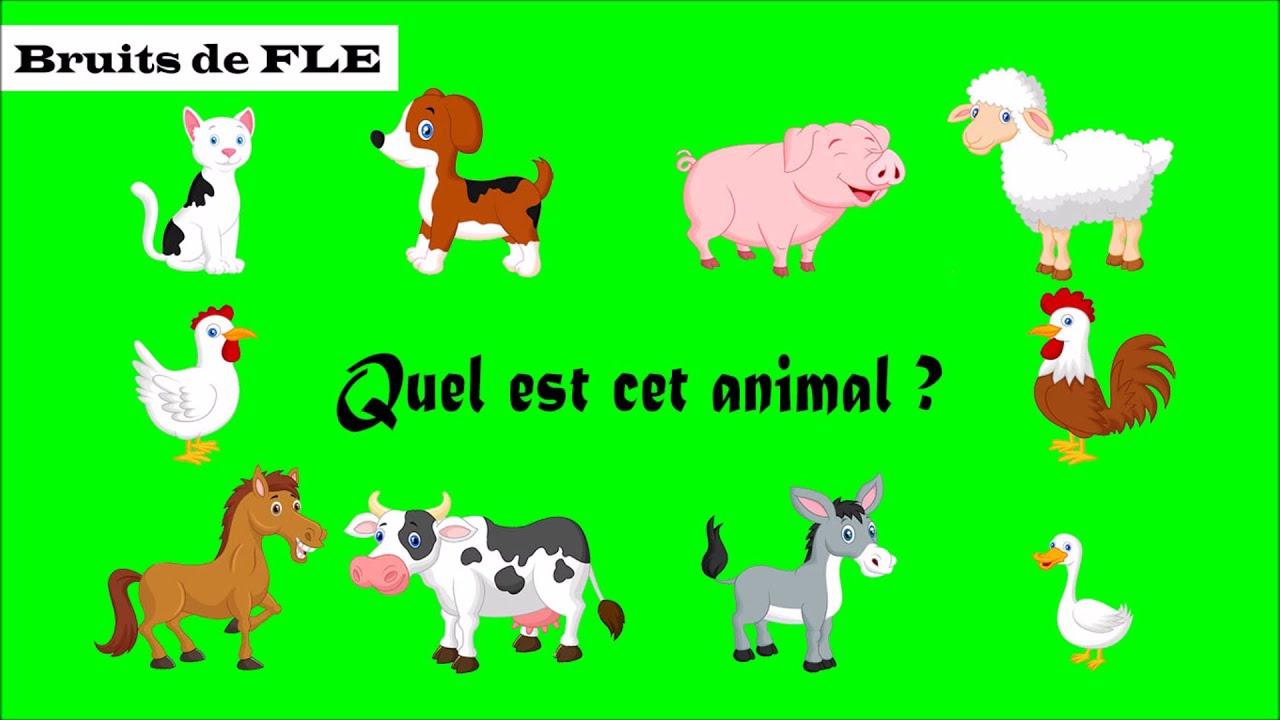 【Bruits De Fle】 Quel Est Cet Animal ? (Les Animaux Domestiques) à Jeu Cri Des Animaux