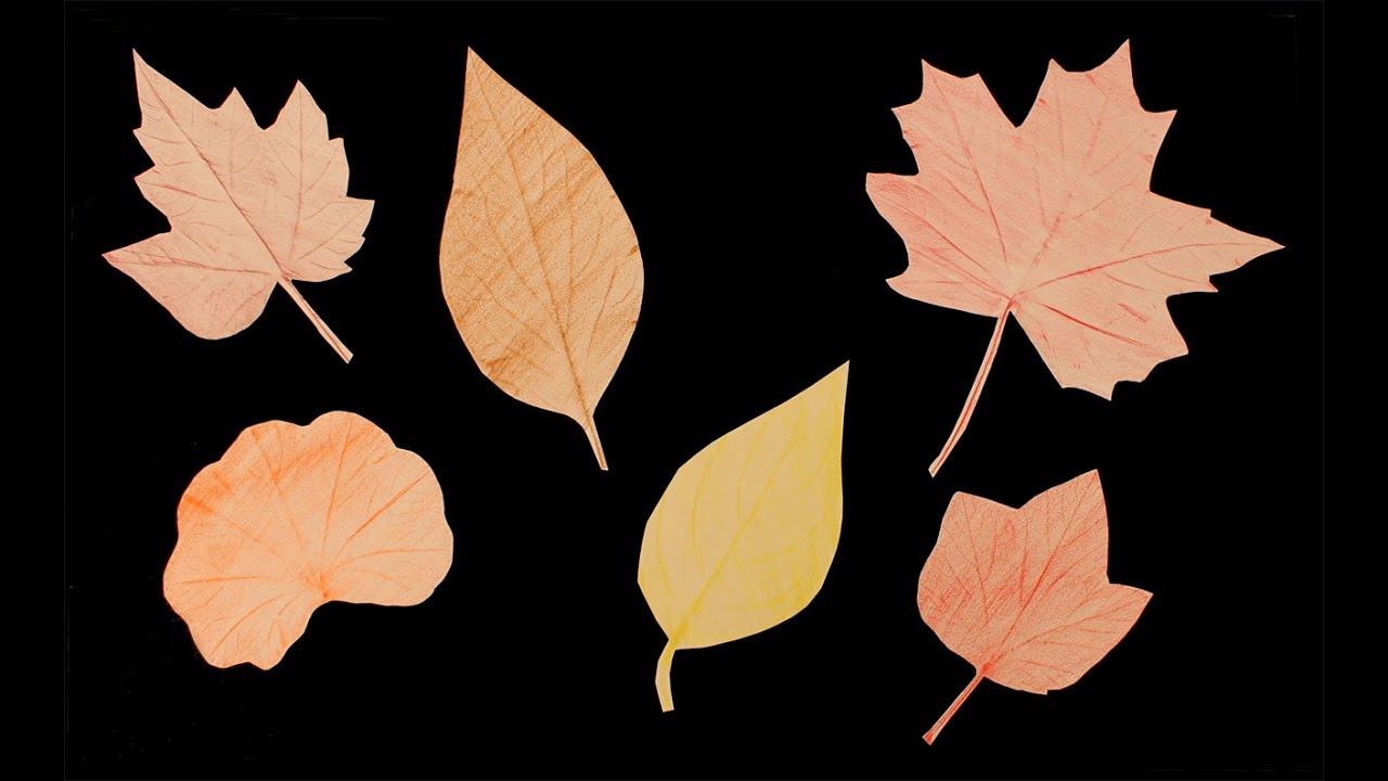 Empreintes De Feuilles: Bricolage D'automne encequiconcerne Dessin De Feuille D Automne