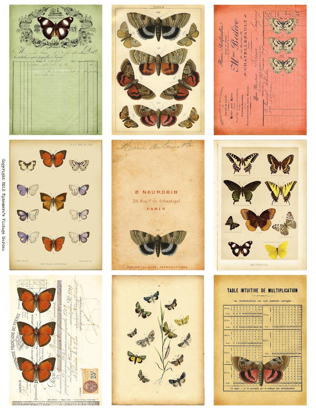 Ephemera's Vintage Garden: Free Weekly Printable: Butterfly serapportantà Etiquette Papillon A Imprimer