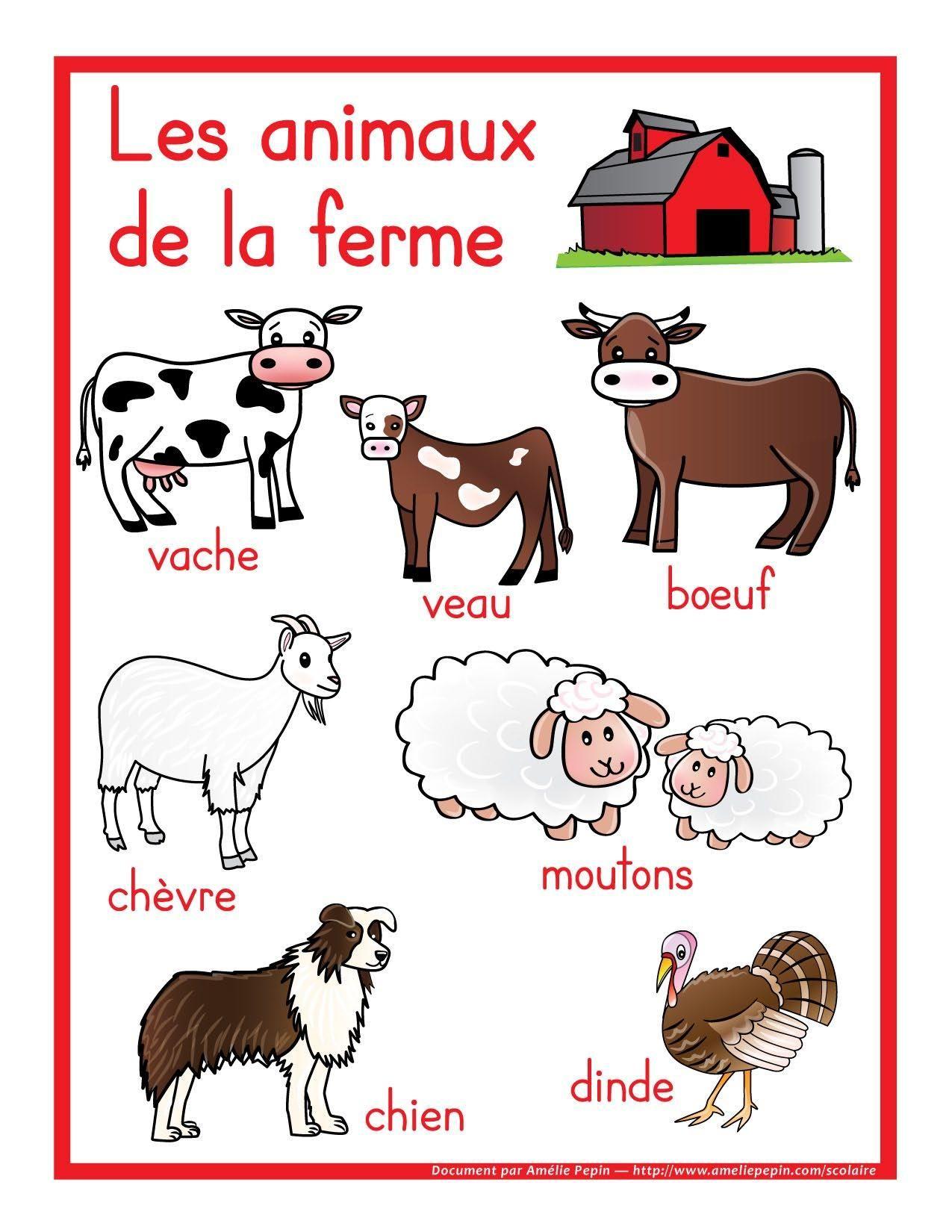 Épinglé Par Isabelle Bouchard Sur Animaux Ferme | Animaux De destiné Les Animaux Domestiques En Maternelle