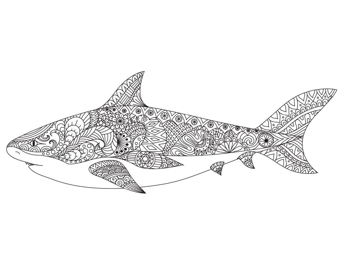 Épinglé Sur Mandala dedans Coloriage Requin Blanc Imprimer