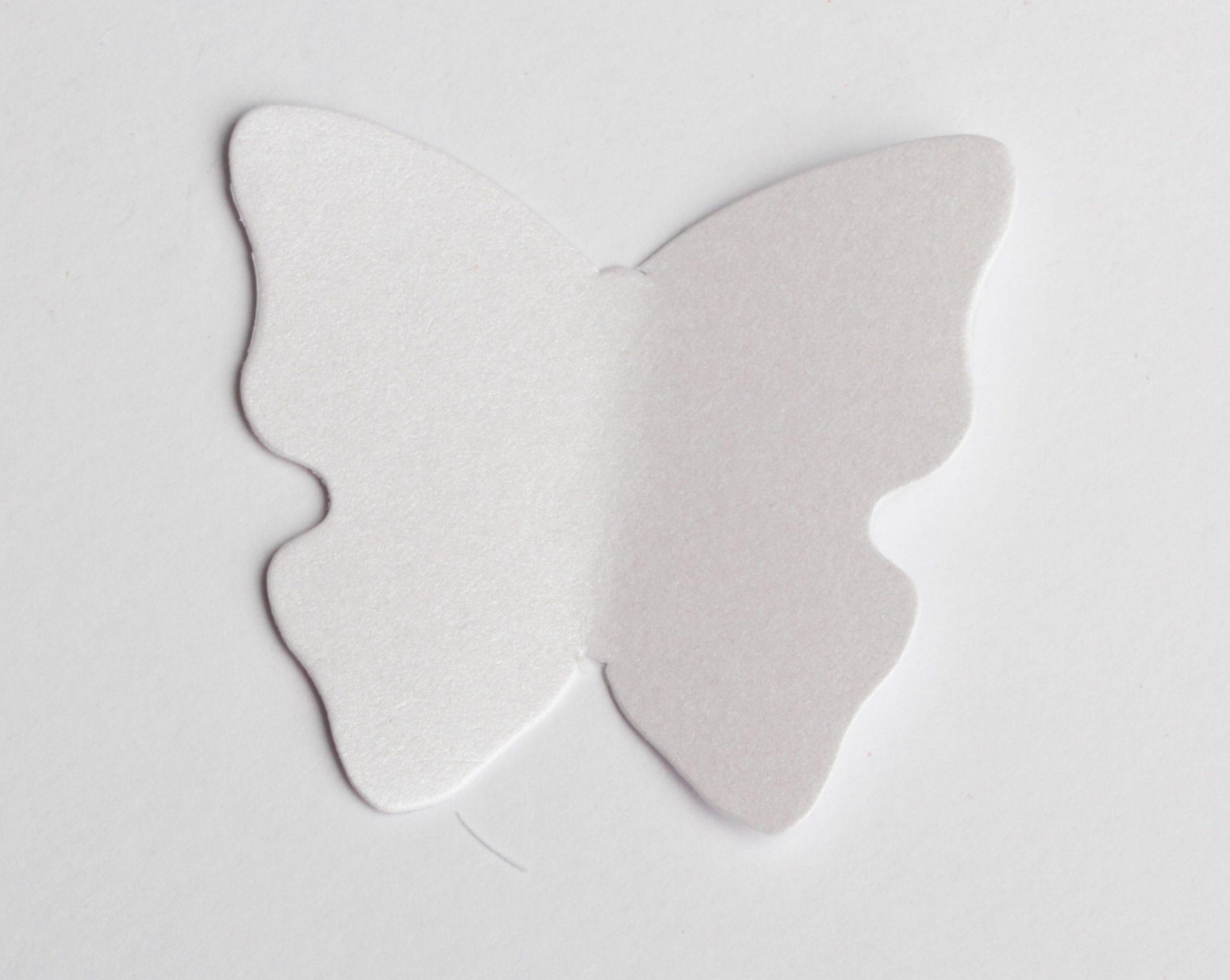 Etiquette Papillon Blanc Nacré (X12) avec Etiquette Papillon A Imprimer