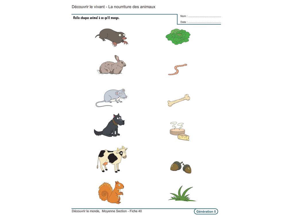 Evolu Fiches - Découvrir Le Monde En Moyenne Section dedans Exercice Maternelle Moyenne Section