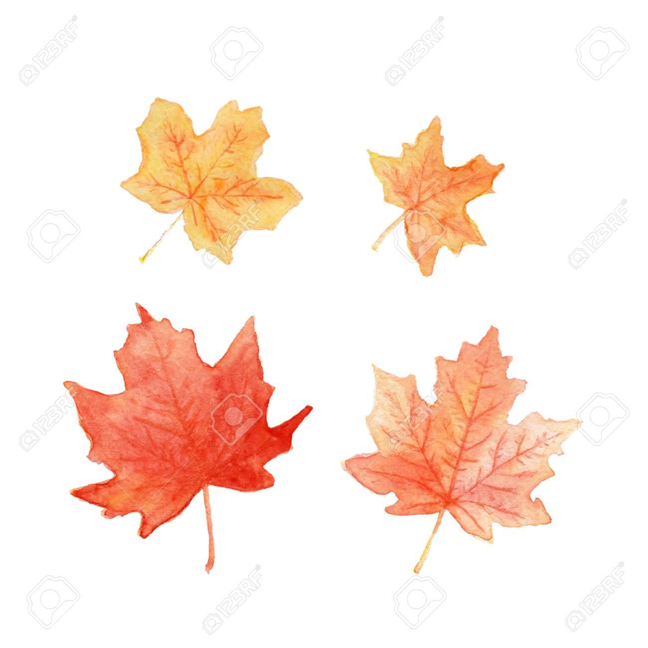 Feuilles D'automne De Couleur Érable À L'aquarelle à Dessin De Feuille D Automne