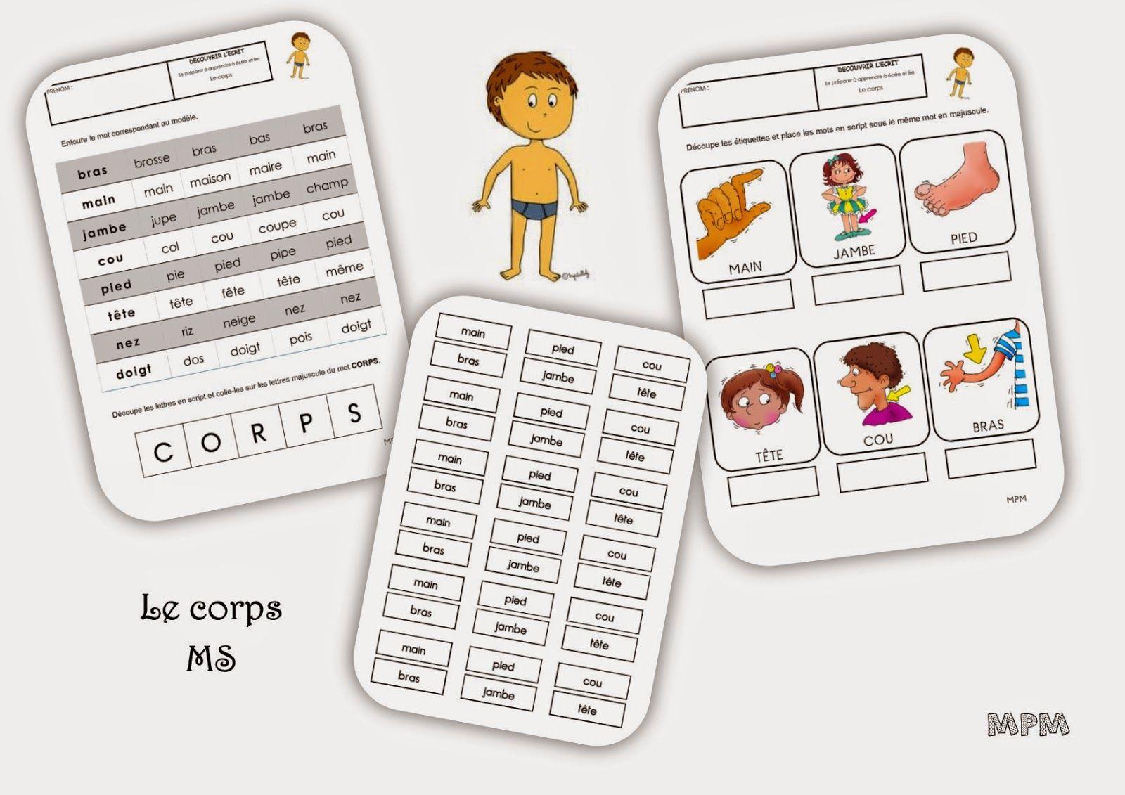 Fiches De Travail Ms - Le Corps | Corps tout Le Corps Humain En Maternelle