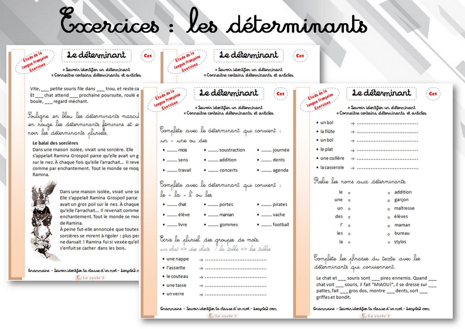 Fiches D'écercices Sur Les Déterminants - Grammaire Ce1 avec Fiche Français Ce1 Imprimer