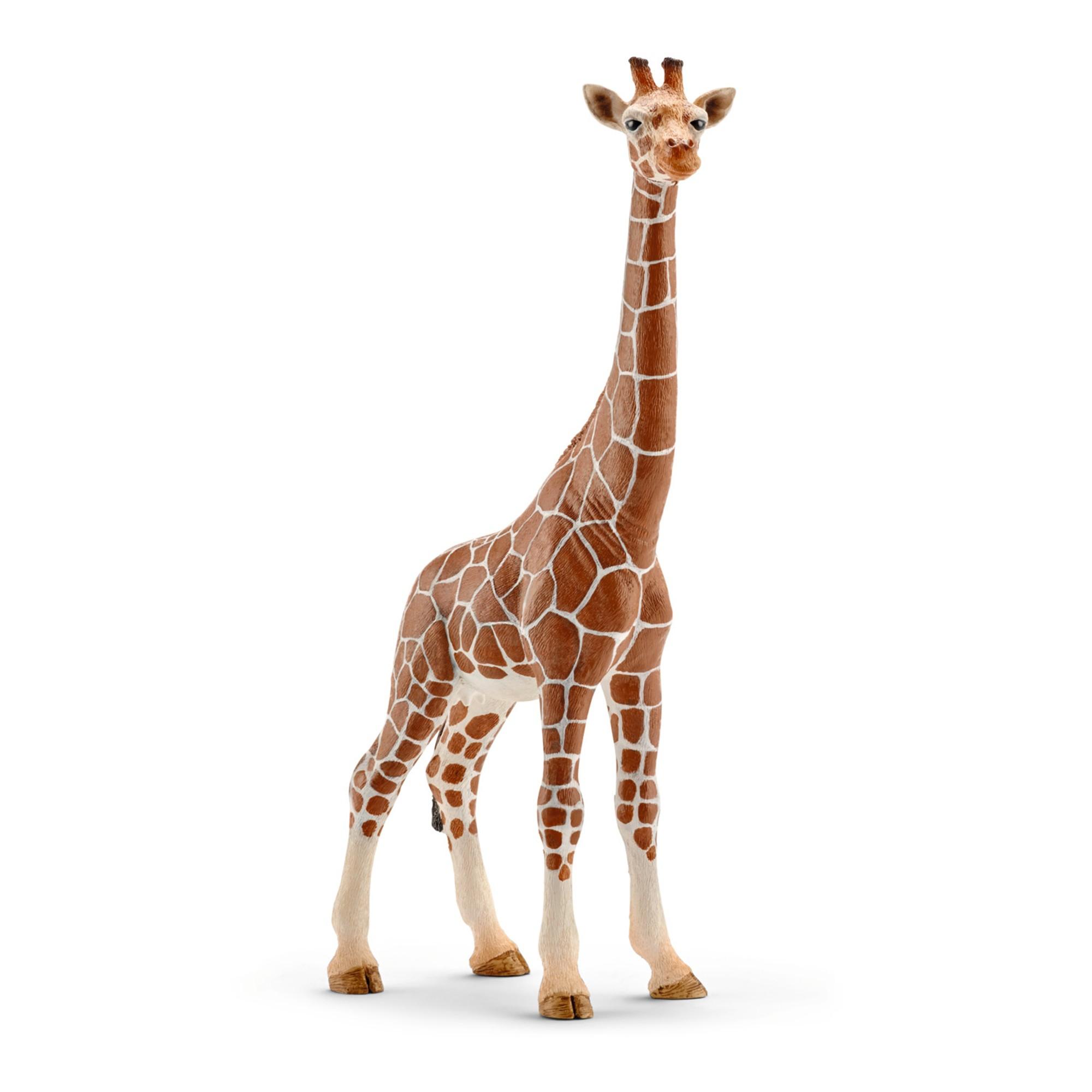 Figurine De Jeu - Girafe, Femelle destiné Jeux De Girafe Gratuit