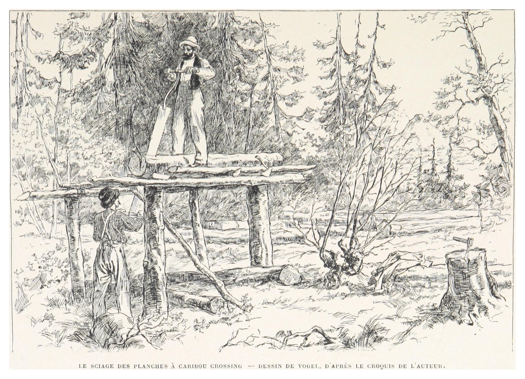 File:boillot(1899) P081 Le Sciage Des Planches À Caribou tout Caribou Dessin