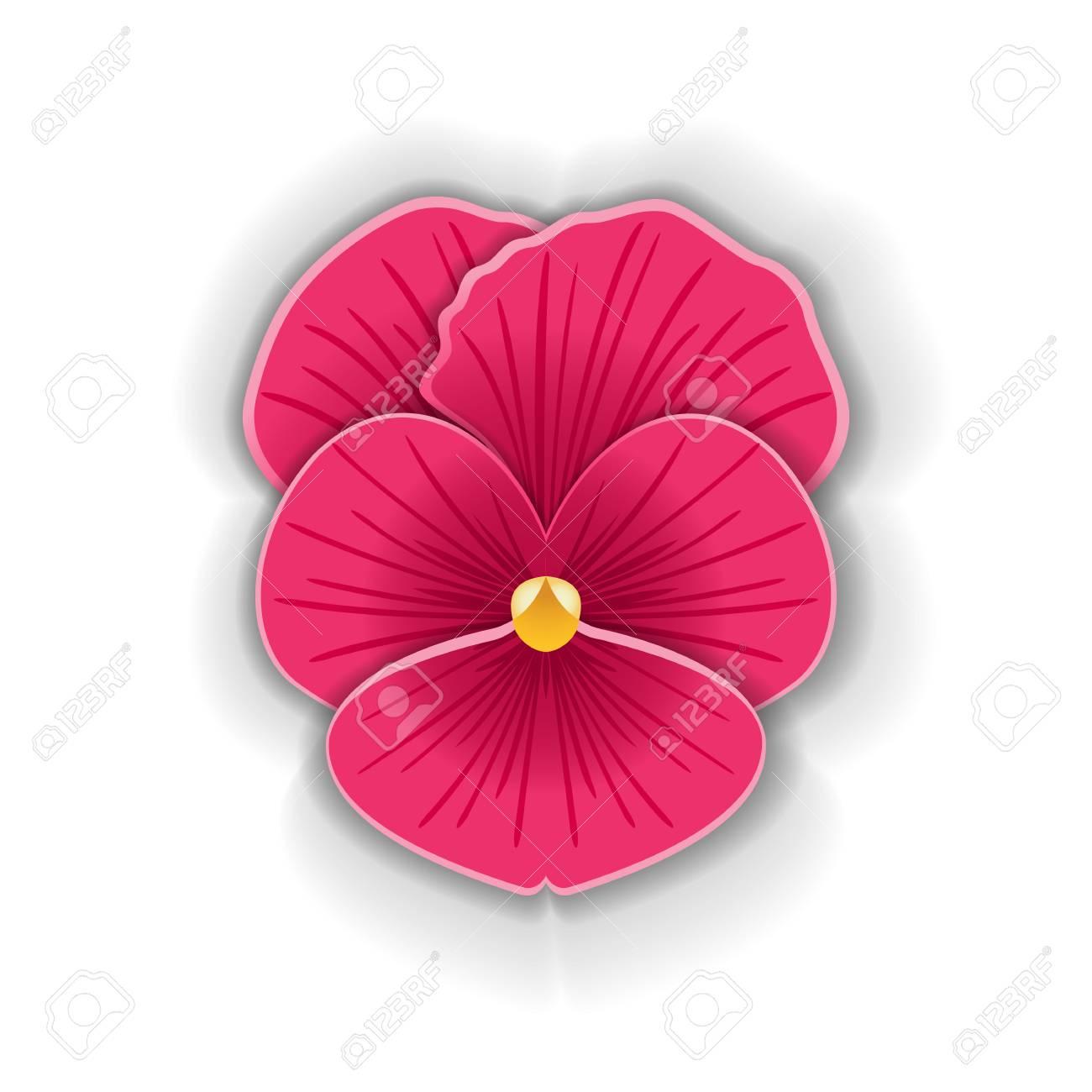 Fleur De Pensée Mignonne Dans Le Style Art Papier Isolé Sur Fond Blanc.  Schéma De Papier. Illustration Vectorielle pour Schéma D Une Fleur