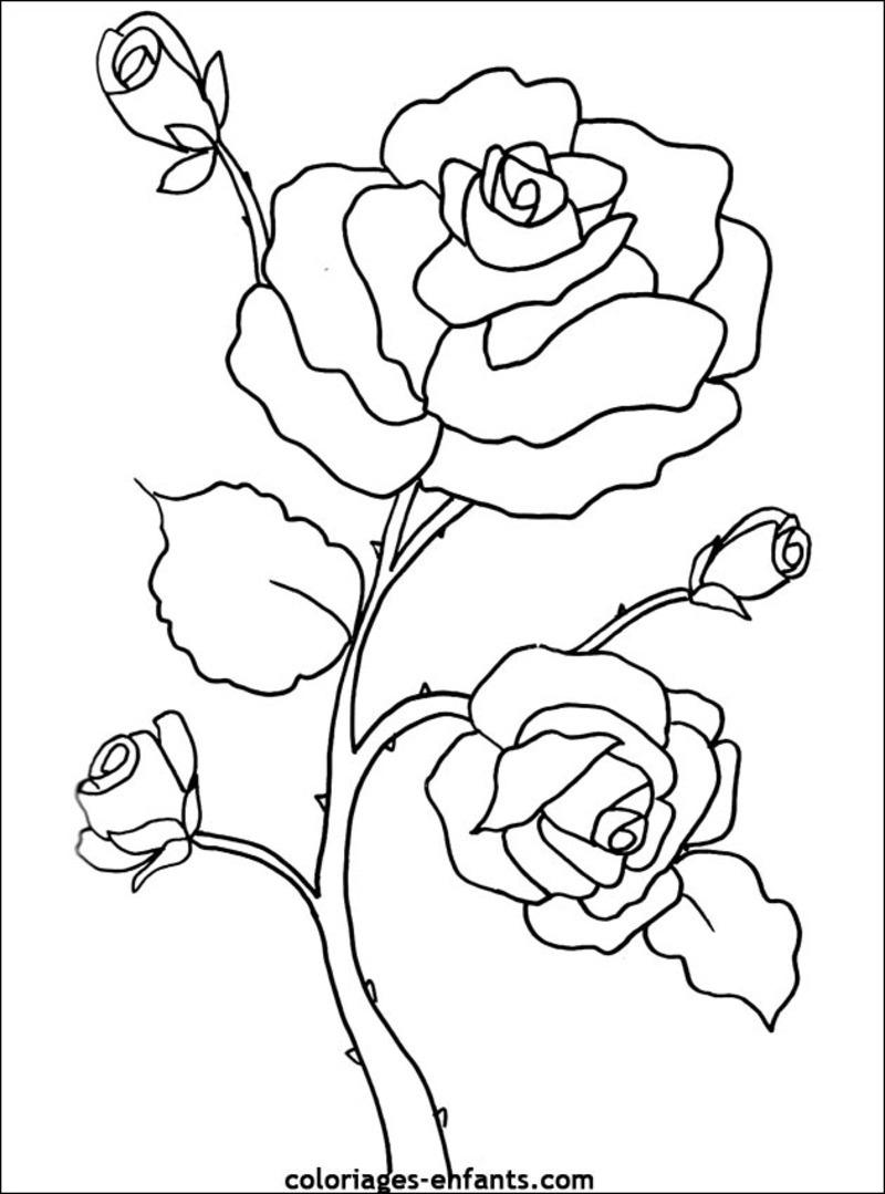 Fleurs (Nature) – Page 2 – Coloriages À Imprimer destiné Dessin A Colorier De Fleur
