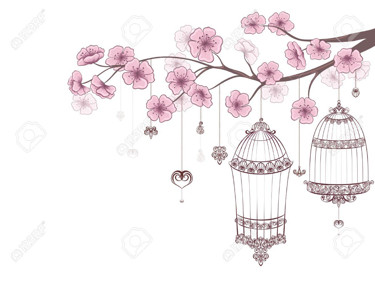 Fond Floral De Printemps. Cages D'oiseaux Sur Une Branche De Cerisier En  Fleur Isolé Sur Un Blanc. tout Dessin De Cage D Oiseau