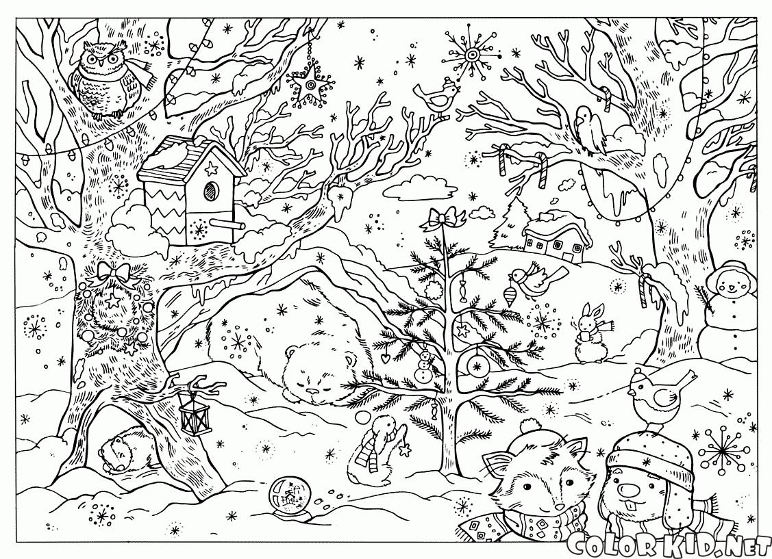 Forêt #36 (Nature) – Coloriages À Imprimer destiné Dessin De Foret