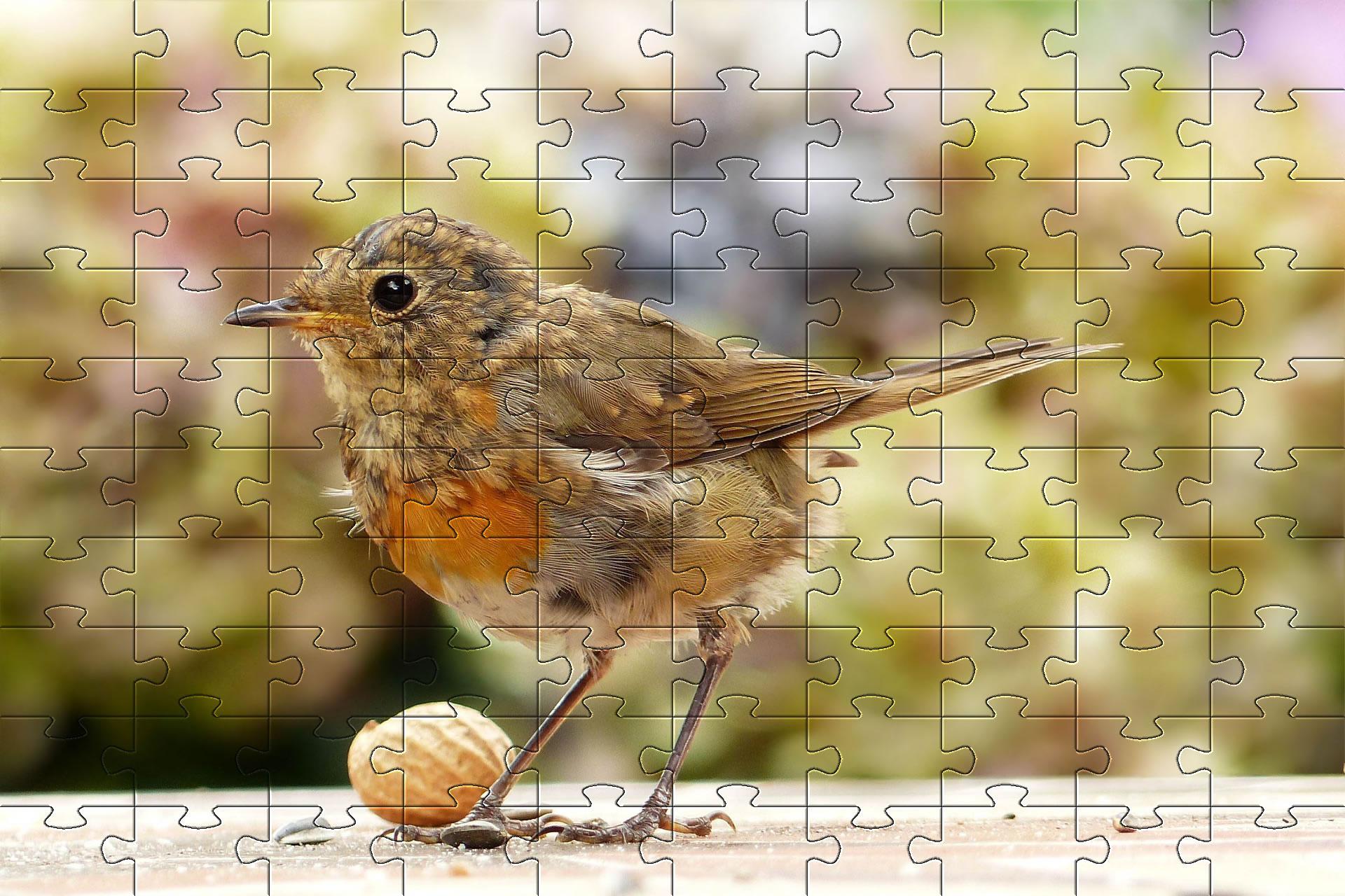 Free Jigsaw Puzzle Games - Online Jigsaw Puzzles | Puzzles encequiconcerne Puzzle Photo Gratuit