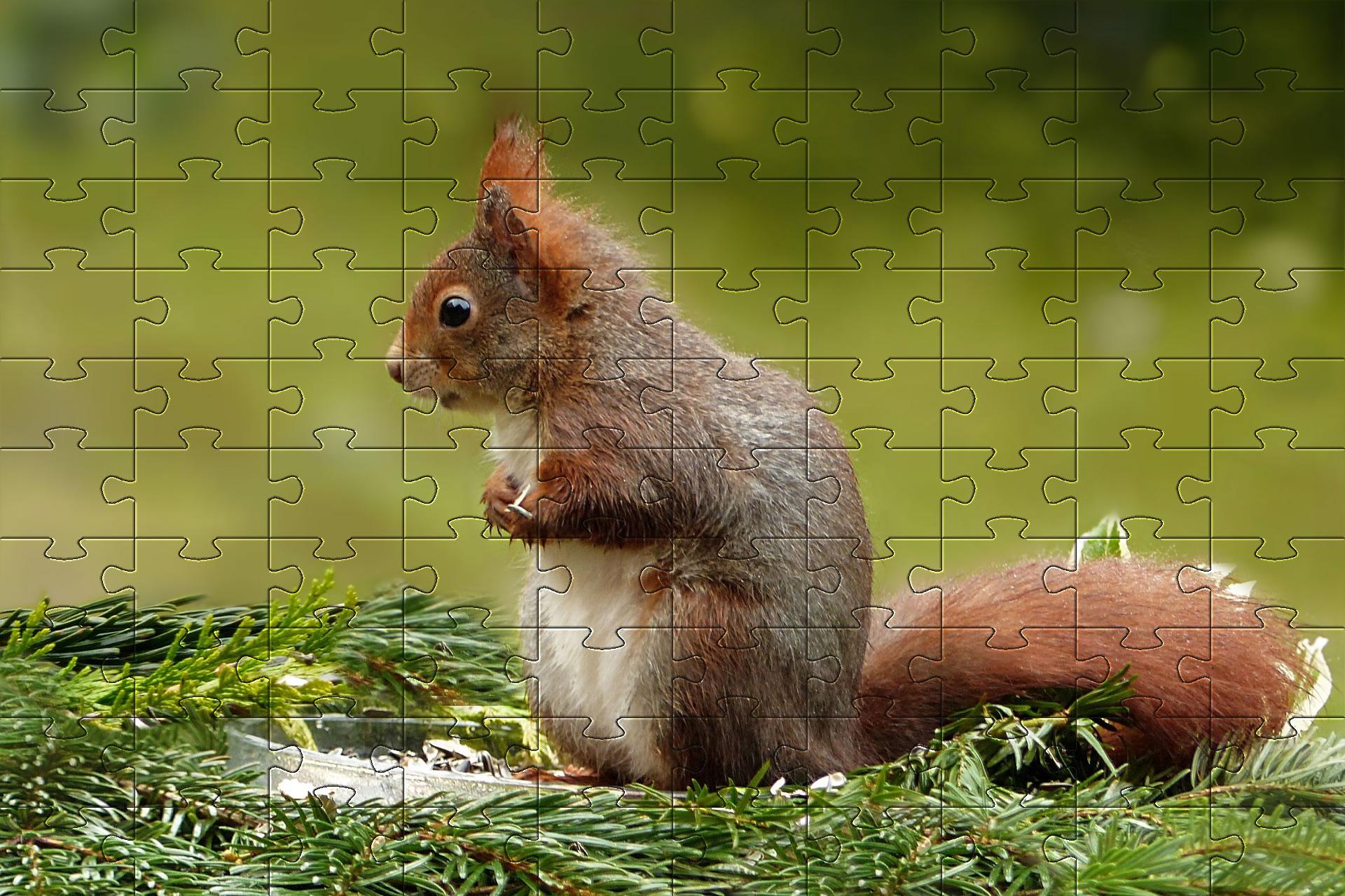 Free Jigsaw Puzzle Games - Online Jigsaw Puzzles | Puzzles intérieur Puzzle Photo Gratuit