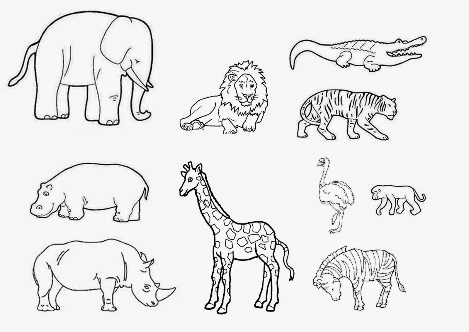 Gabarit Animaux Savane - Recherche Google | Coloriage tout Animaux A Dessiner Imprimer