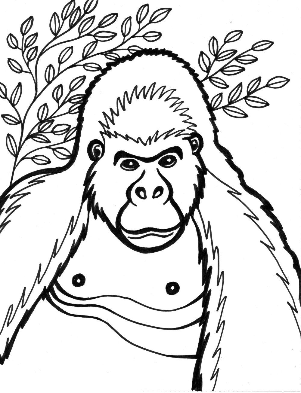 Gorille #11 (Animaux) – Coloriages À Imprimer avec Coloriage Gorille