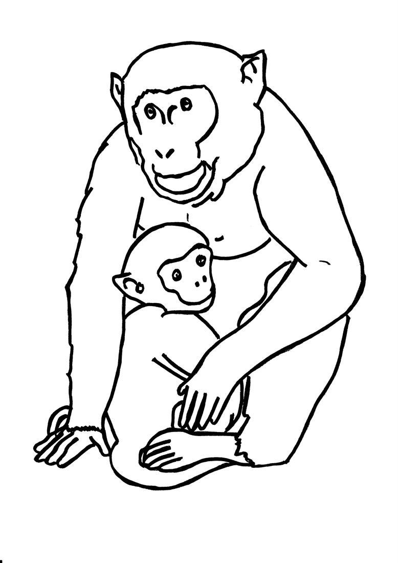 Gorille #45 (Animaux) – Coloriages À Imprimer encequiconcerne Coloriage Gorille