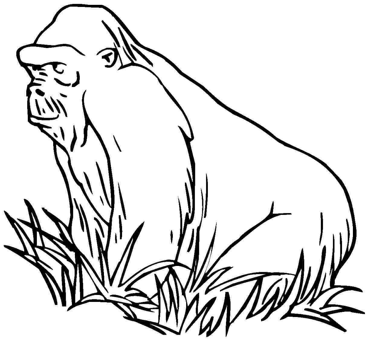Gorille #64 (Animaux) – Coloriages À Imprimer destiné Coloriage Gorille