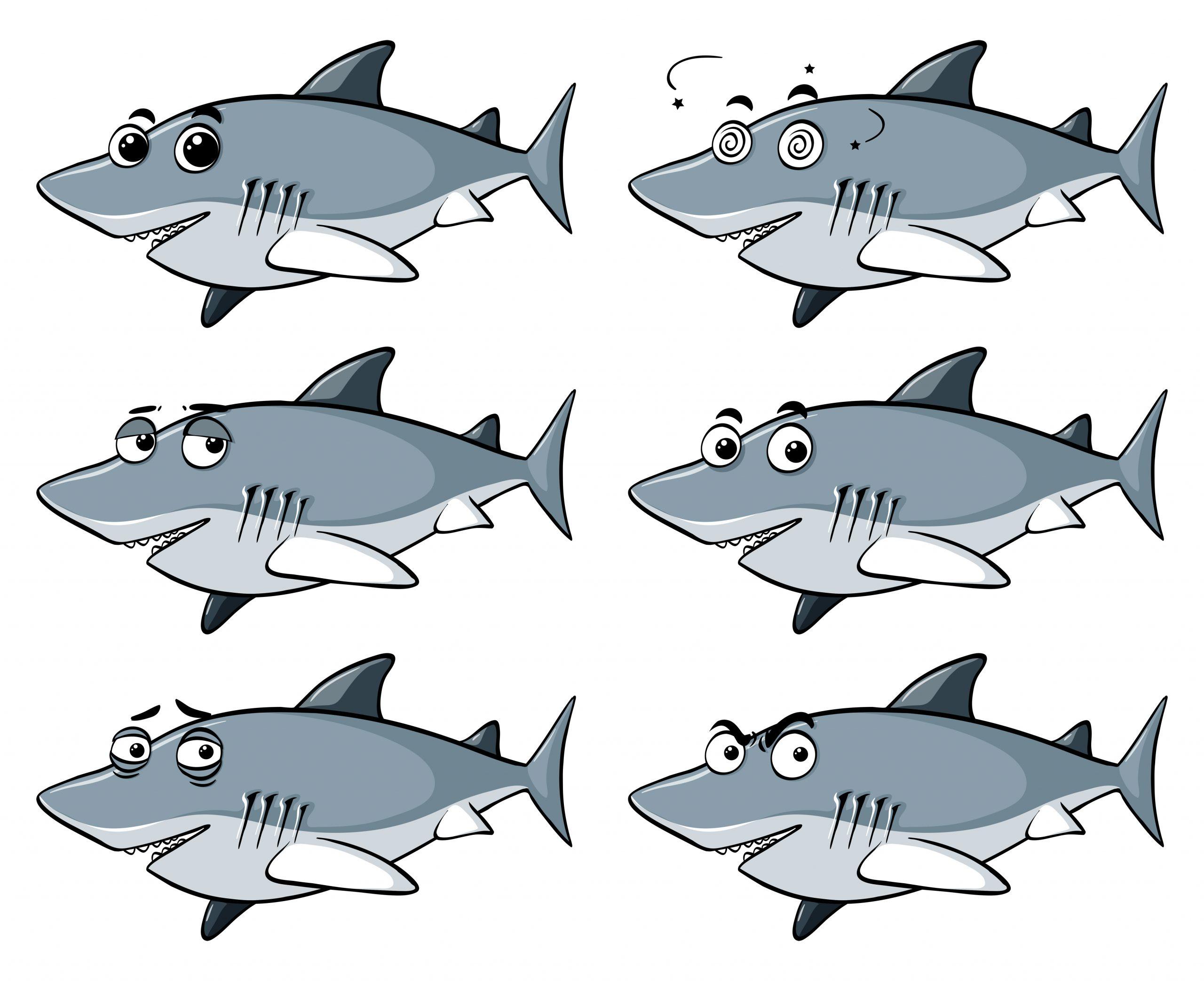 Grand Requin Blanc Avec Six Émotions Différentes concernant Jeux Gratuit Requin Blanc
