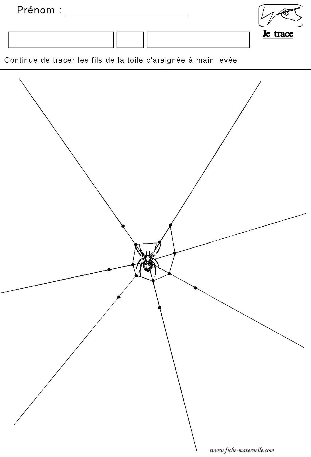 Graphisme Tracer Des Lines De La Toile D'araignée pour Dessiner Une Araignee