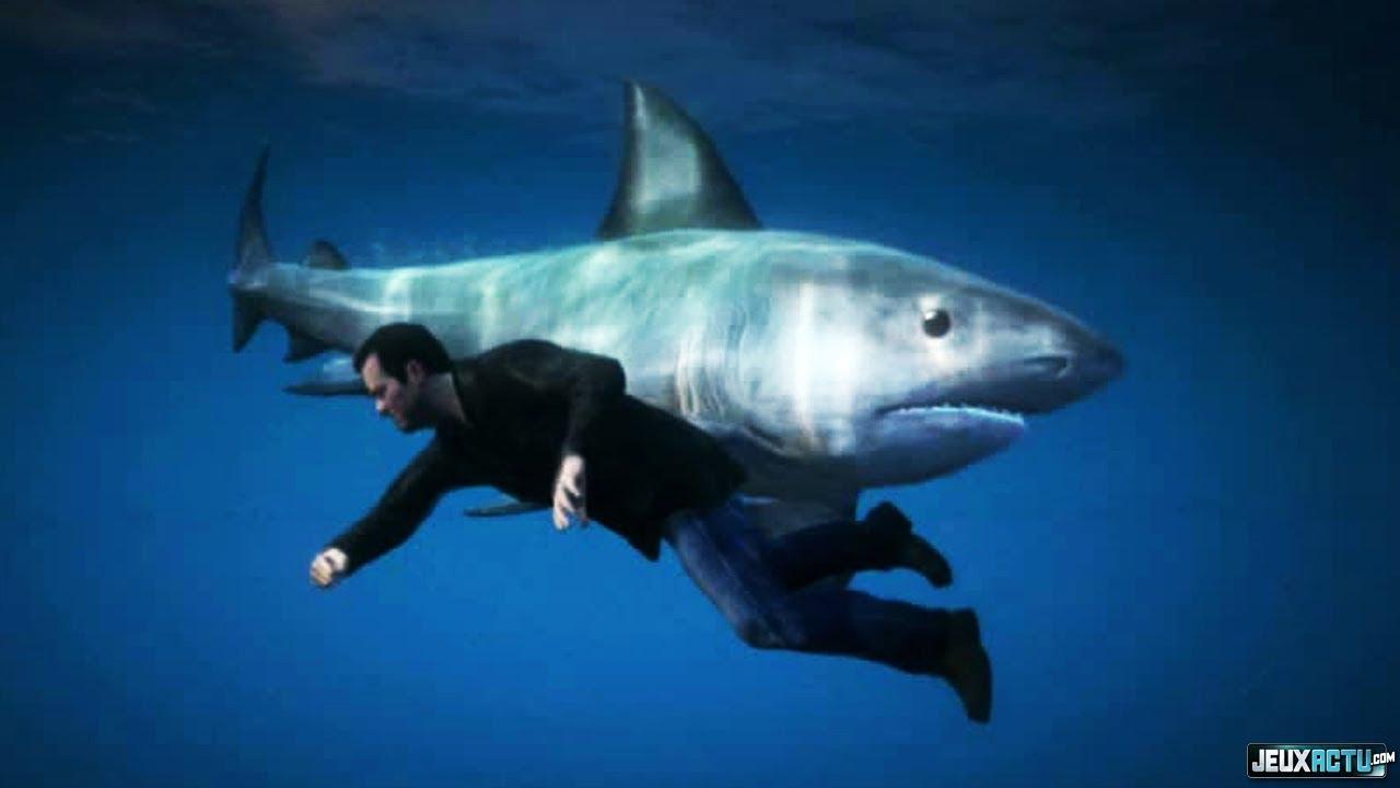 Gta 5 - Guide Pour Trouver Le Requin ! avec Requin Jeux Video