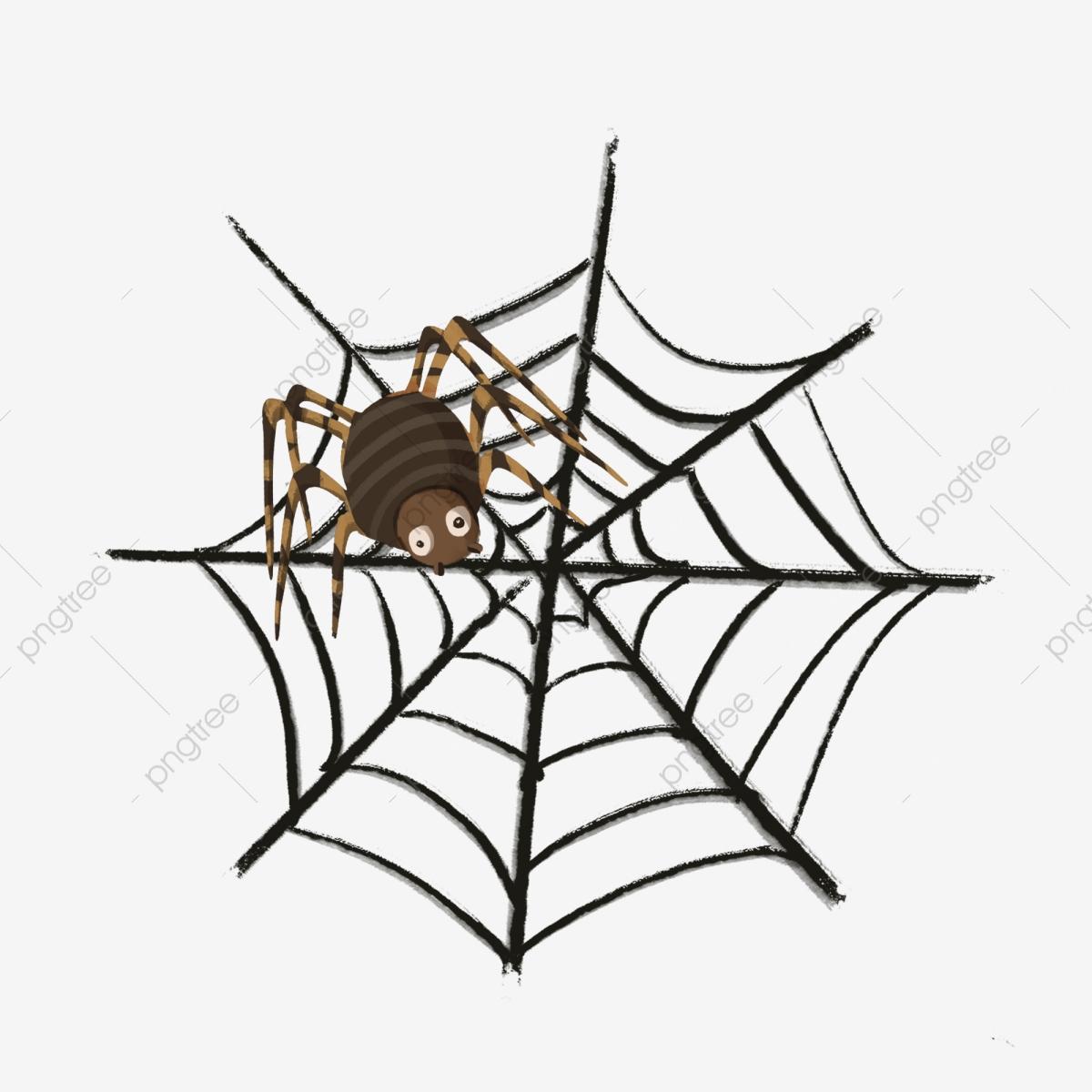 Halloween Thème Toile Daraignée Araignée, Dessin Animé à Dessin Toile Araignée