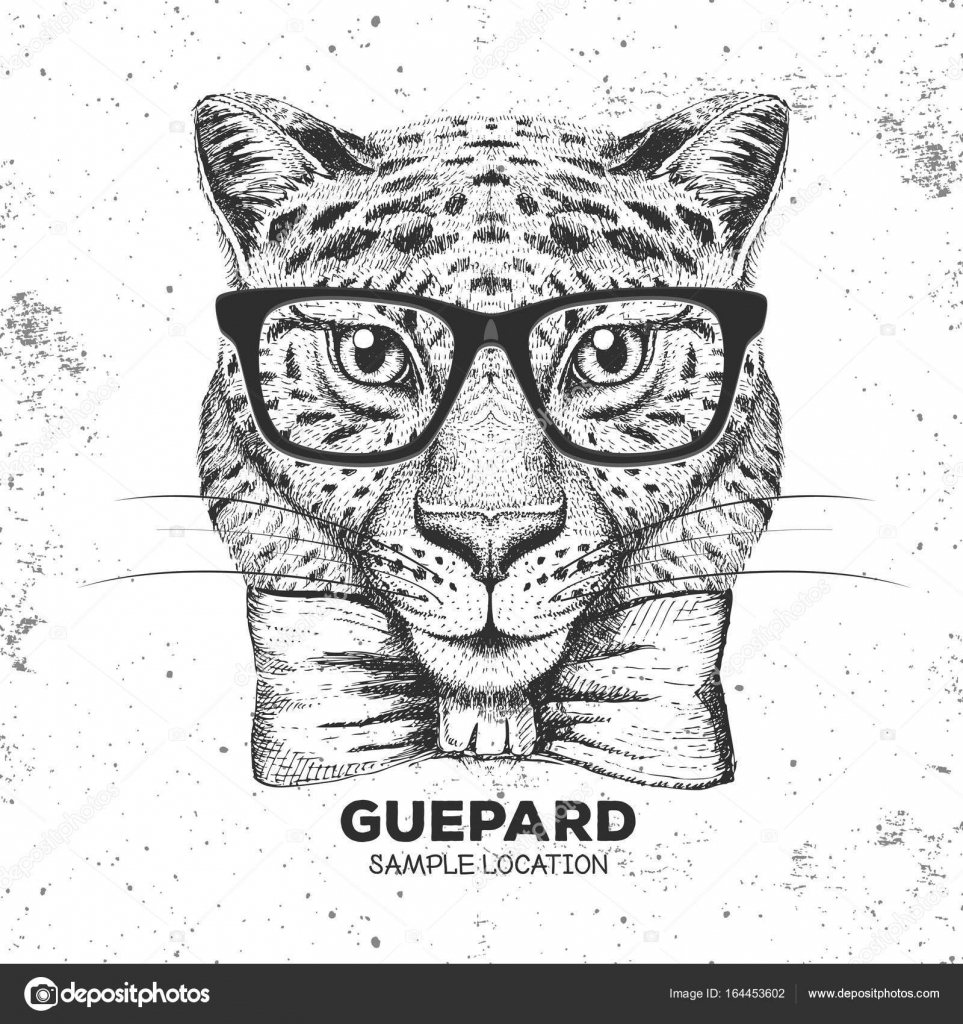 Hipster Animal Guepard. Hand Drawing Muzzle Of Guepard dedans Guépard Dessin
