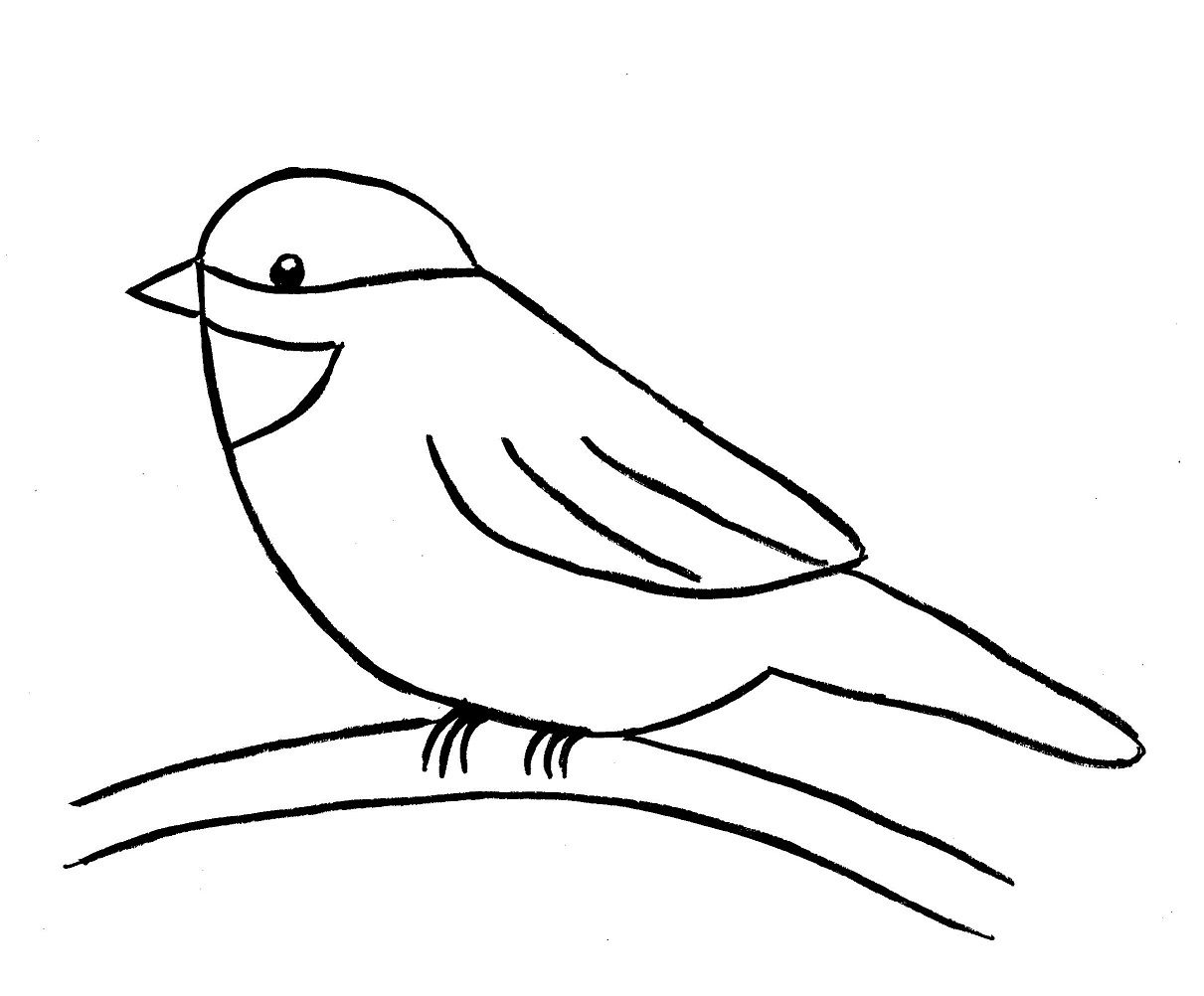 How To Draw A Bird Step By Step Easy With Pictures | Dessin à Dessin D Oiseau Simple