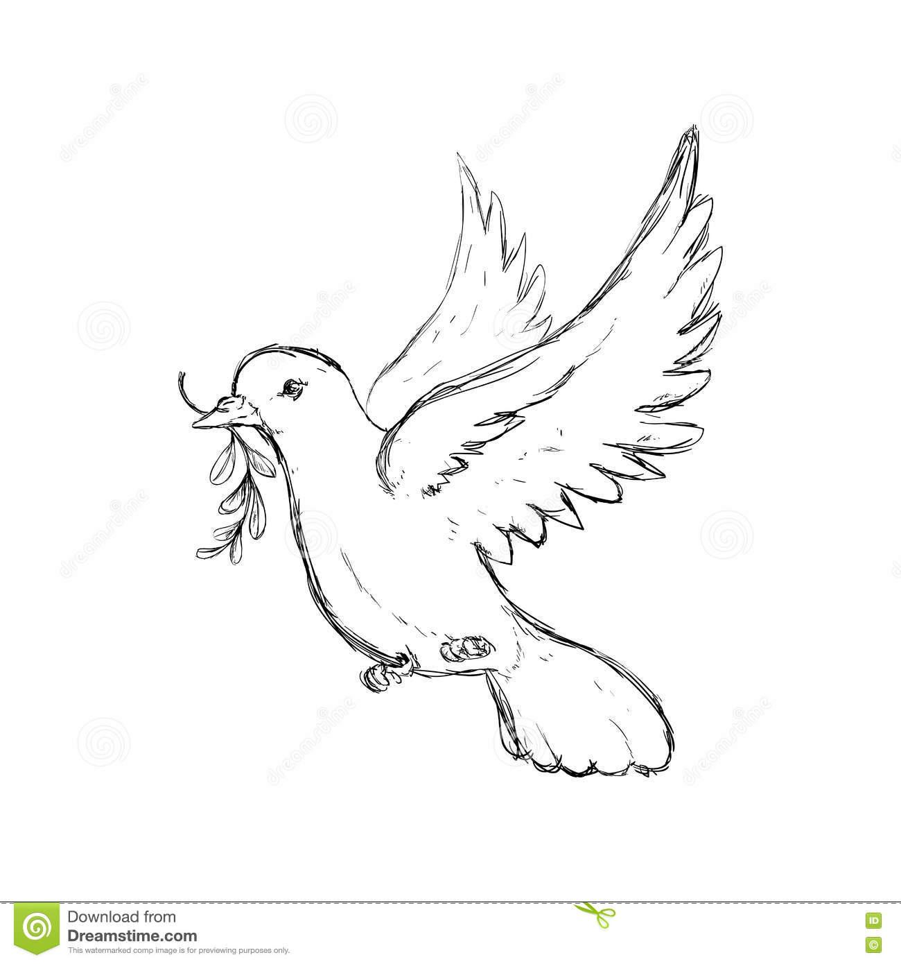 Icône De Colombe Conception D'oiseau Et De Paix Dessin De à Dessin D Oiseau Simple