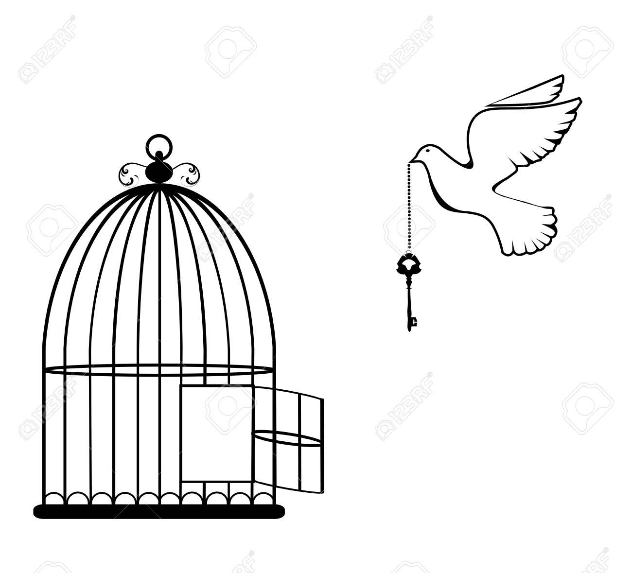 Illustration Vectorielle D'une Cage À Oiseaux Ouverte Avec Colombe Et Clé serapportantà Dessin De Cage D Oiseau
