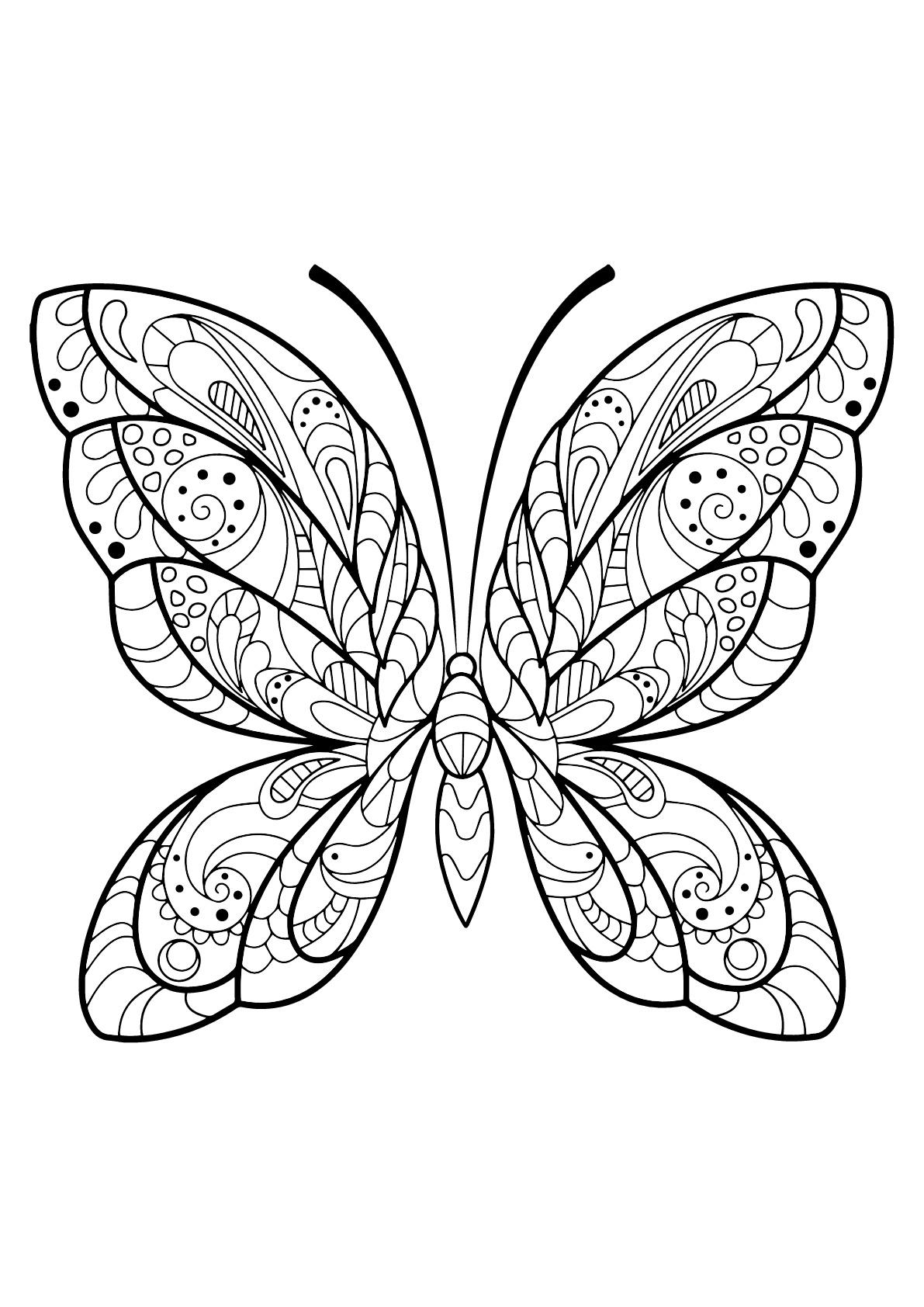 Image De Papillons À Imprimer Et Colorier - Coloriage De serapportantà Masque Papillon À Imprimer