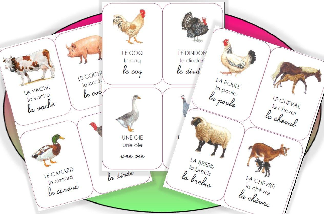 Imagiers La Suite | Matériaux De Montessori, Imagier tout Jeux D Animaux De La Ferme