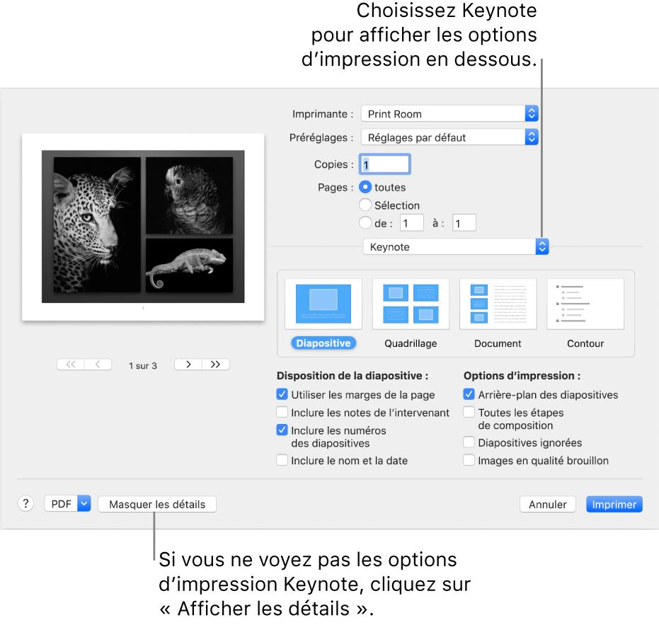 Imprimer Une Présentation Keynote Sur Mac - Assistance Apple pour Quadrillage À Imprimer