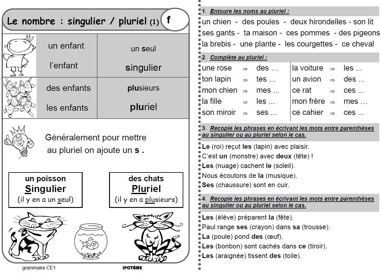 Ipotâme .tâme: Ce1 Grammaire Exercices Et Leçons pour Fiche Français Ce1 Imprimer