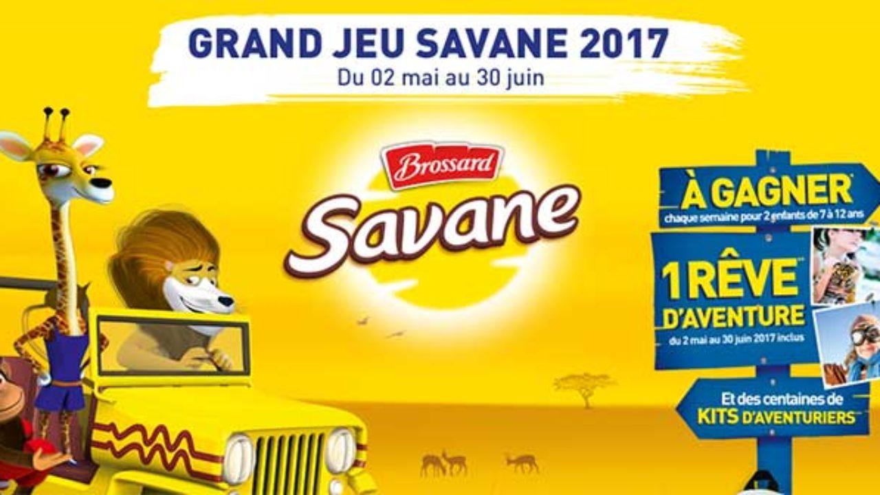 Jeu-Brossard.fr – Jeu Brossard Savane Un Rêve D'aventure serapportantà Jeux De Savane
