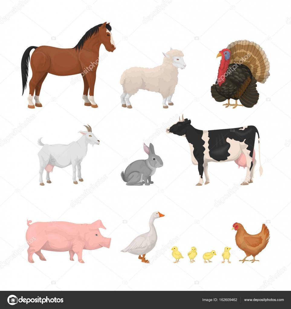 Jeu D'animaux De Ferme. — Image Vectorielle Inspiring.vector destiné Jeux D Animaux De La Ferme