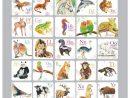 Jeu De Mémoire - Alphabet Et Animaux, Fait Au Québec serapportantà Apprendre Les Animaux Jeux Éducatifs