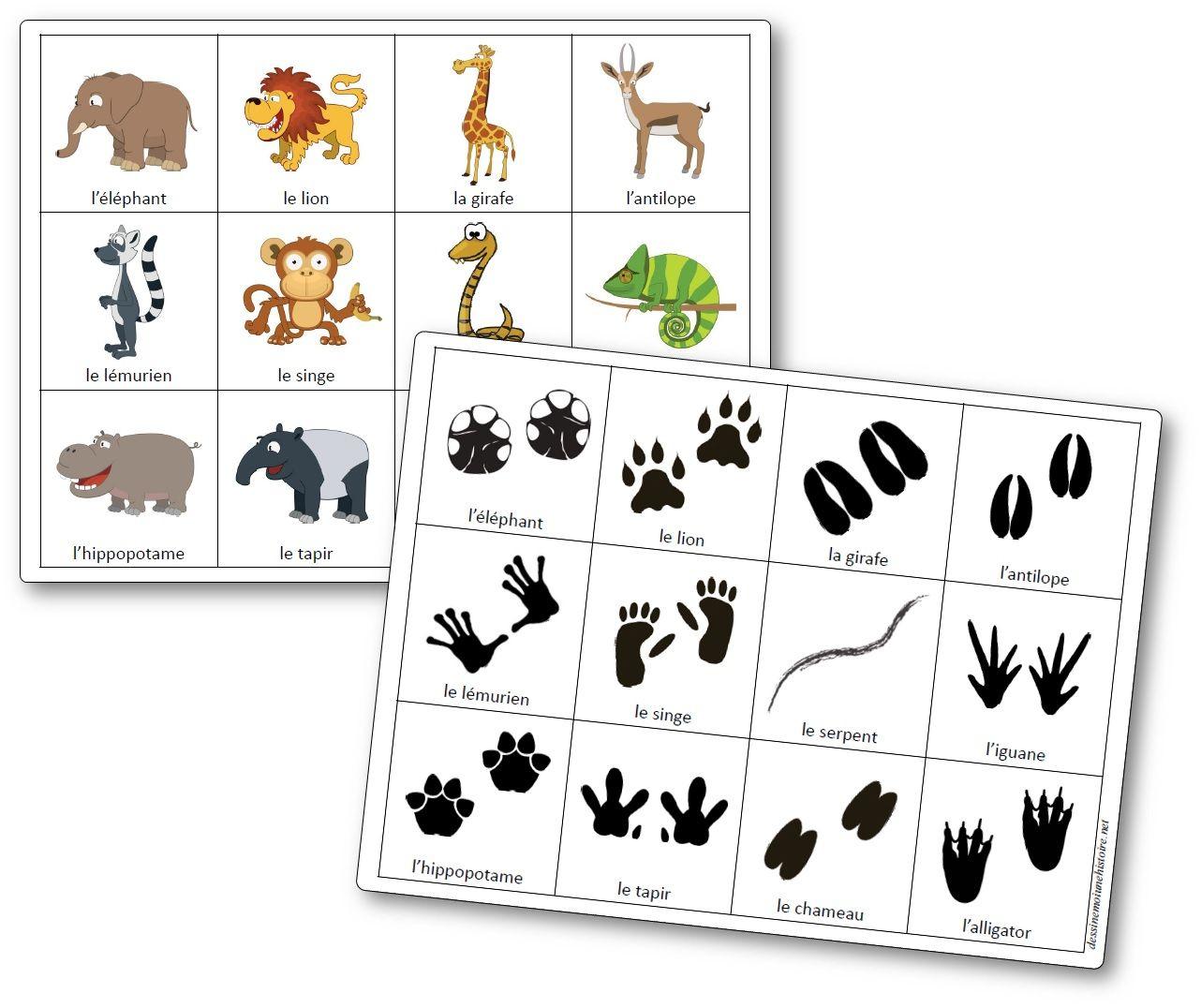 Jeu De Mémoire Des Empreintes Des Animaux D'afrique - Mémory destiné Apprendre Les Animaux Jeux Éducatifs