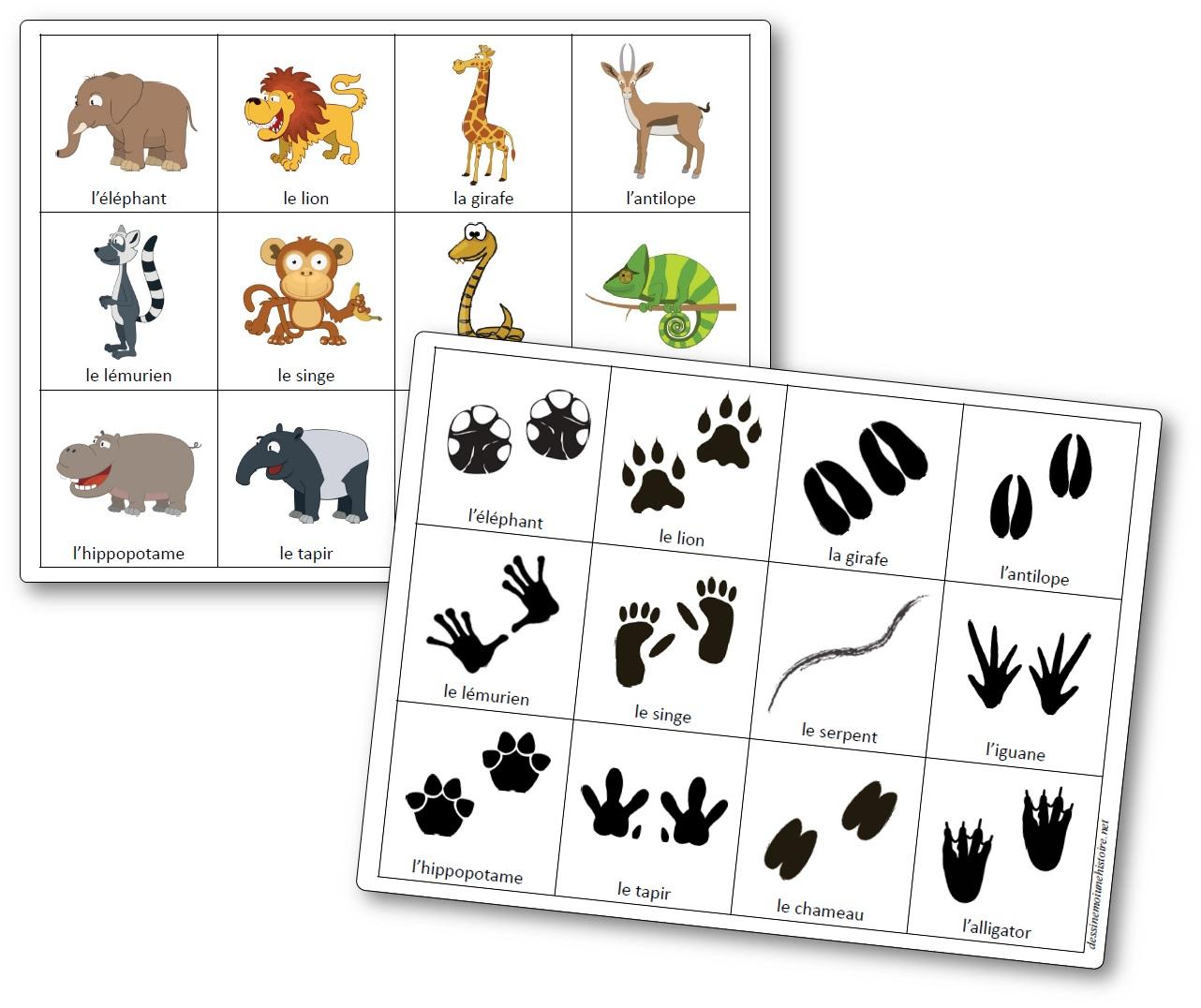 Jeu De Mémoire Des Empreintes Des Animaux D'afrique - Mémory destiné Jeux De Memory Pour Enfants