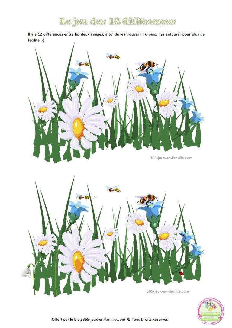 Jeu Des 12 Différences, Printemps, Fleurs, Jeu Gratuit À intérieur Jeux Des Differences Gratuit A Imprimer