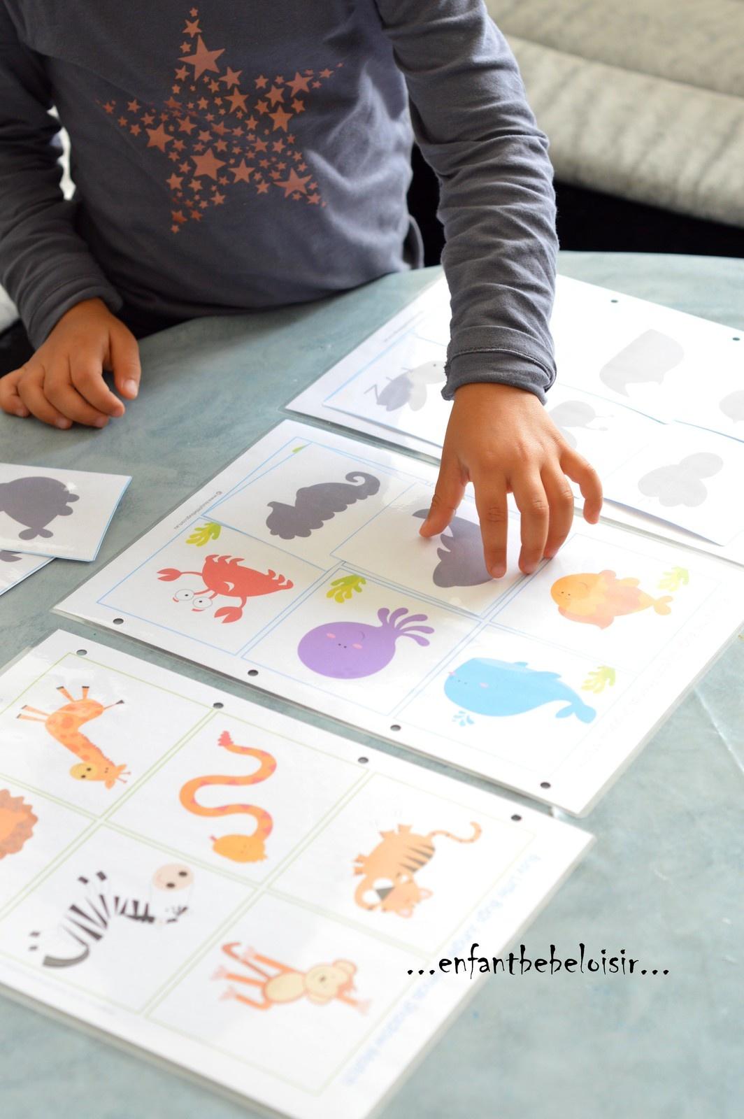 Jeu D'ombres À Imprimer Et Plastifier - Enfant Bébé Loisir dedans Jeux Educatif Maternelle Moyenne Section