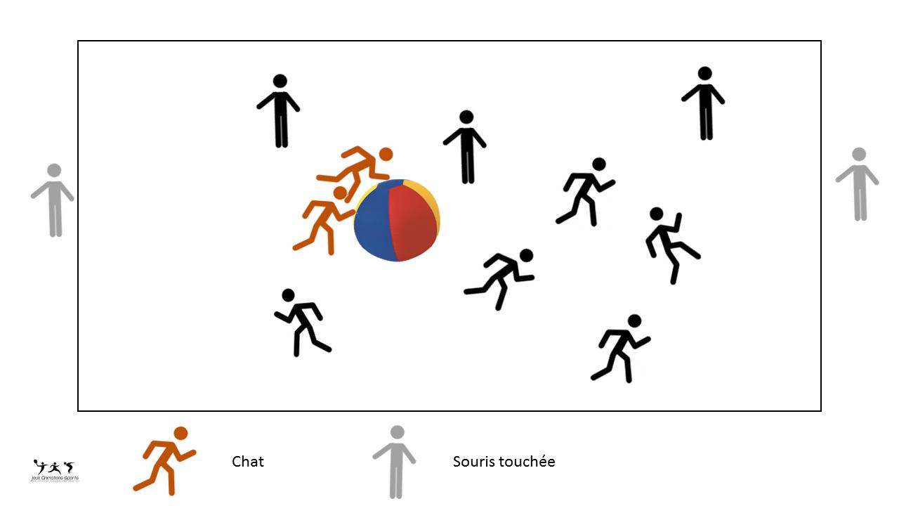 Jeu Du Chat Kin-Ball - Exercice D'échauffement Kin-Ball destiné Exercice Ludique