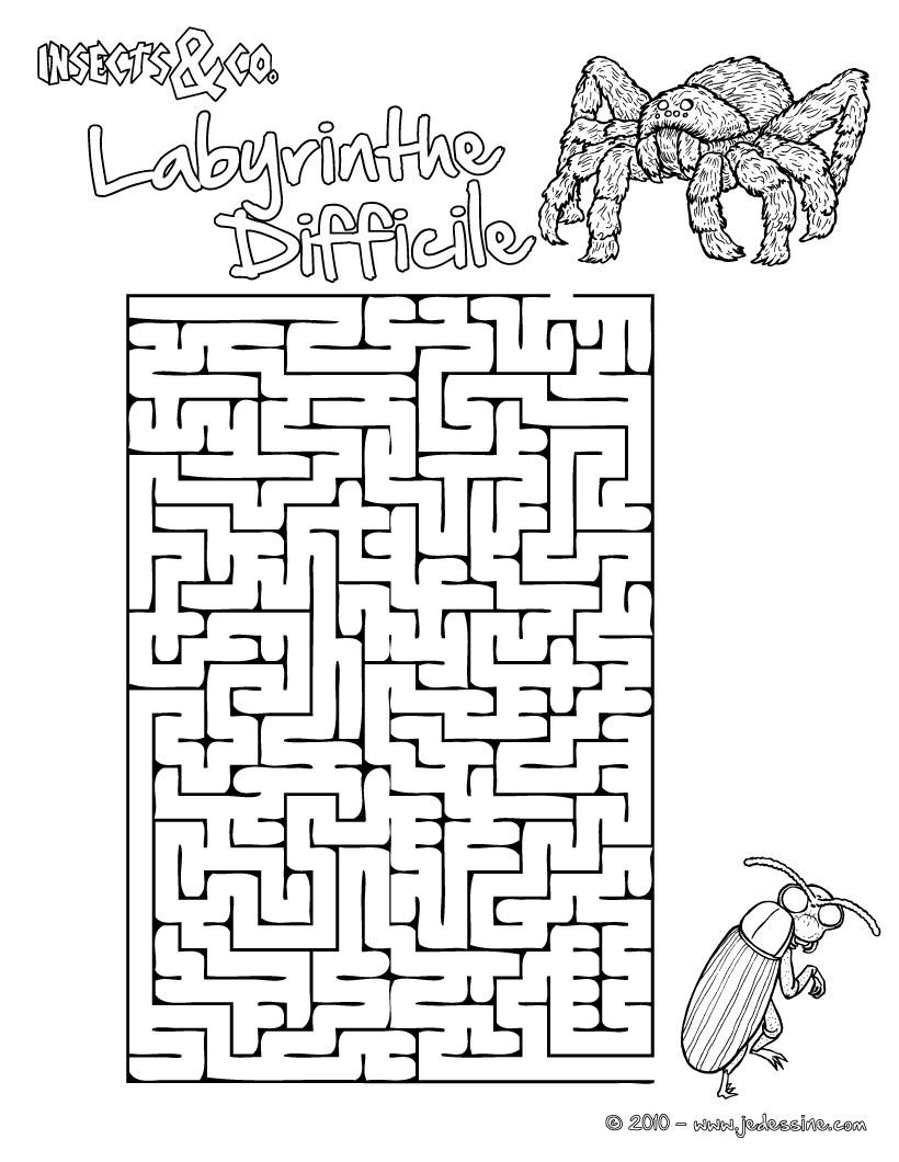 Jeux De Labyrinthe Difficile Insects&co - Fr.hellokids avec Labyrinthes À Imprimer