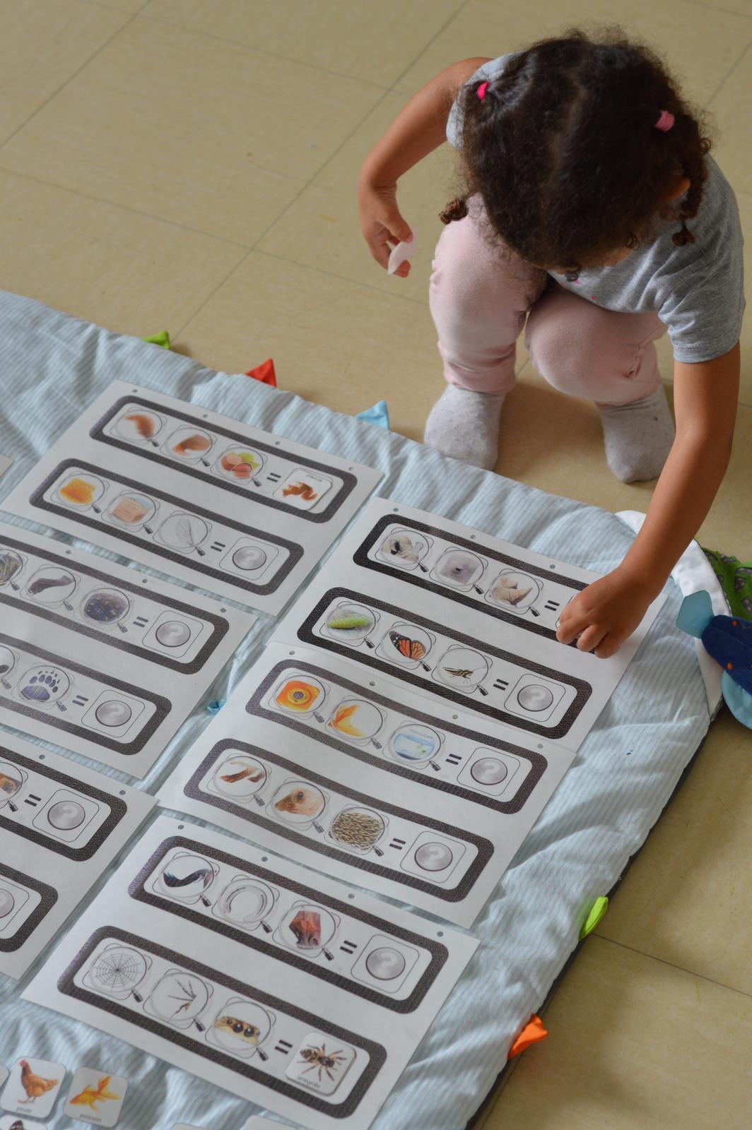Jeux De Logique À Imprimer - Qui Suis-Je ? - Enfant Bébé Loisir à Jeux De Maternelle À Imprimer