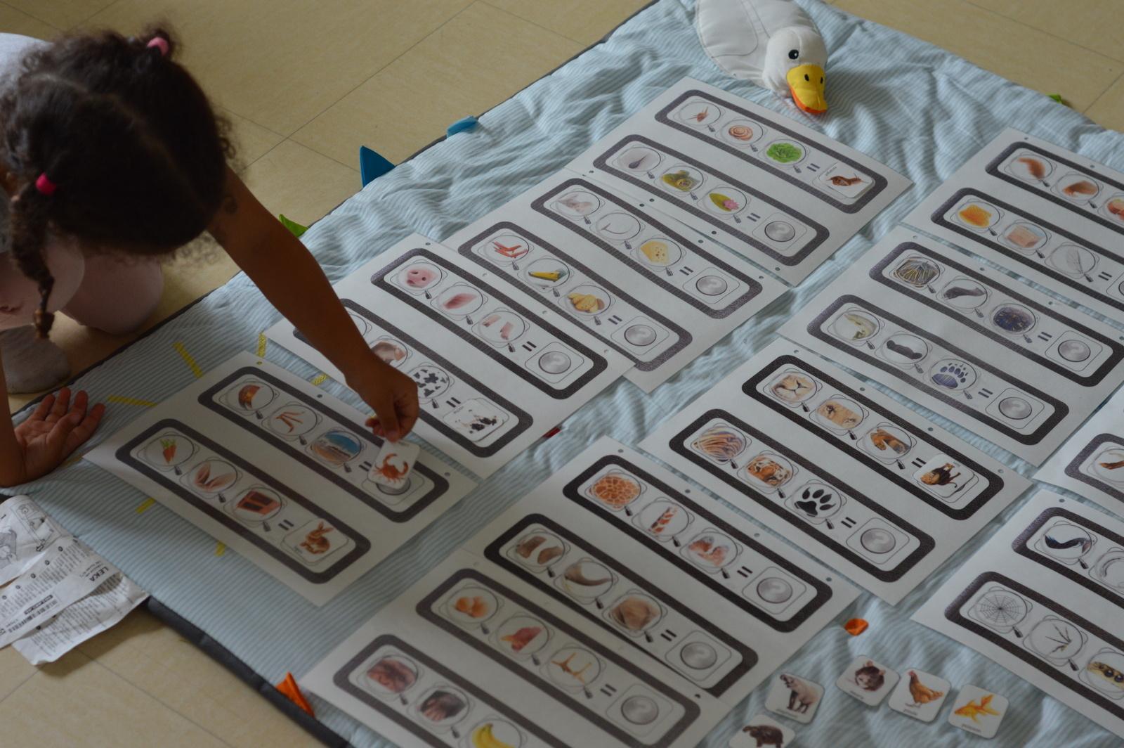 Jeux De Logique À Imprimer - Qui Suis-Je ? - Enfant Bébé Loisir à Jeux Educatif Maternelle Moyenne Section