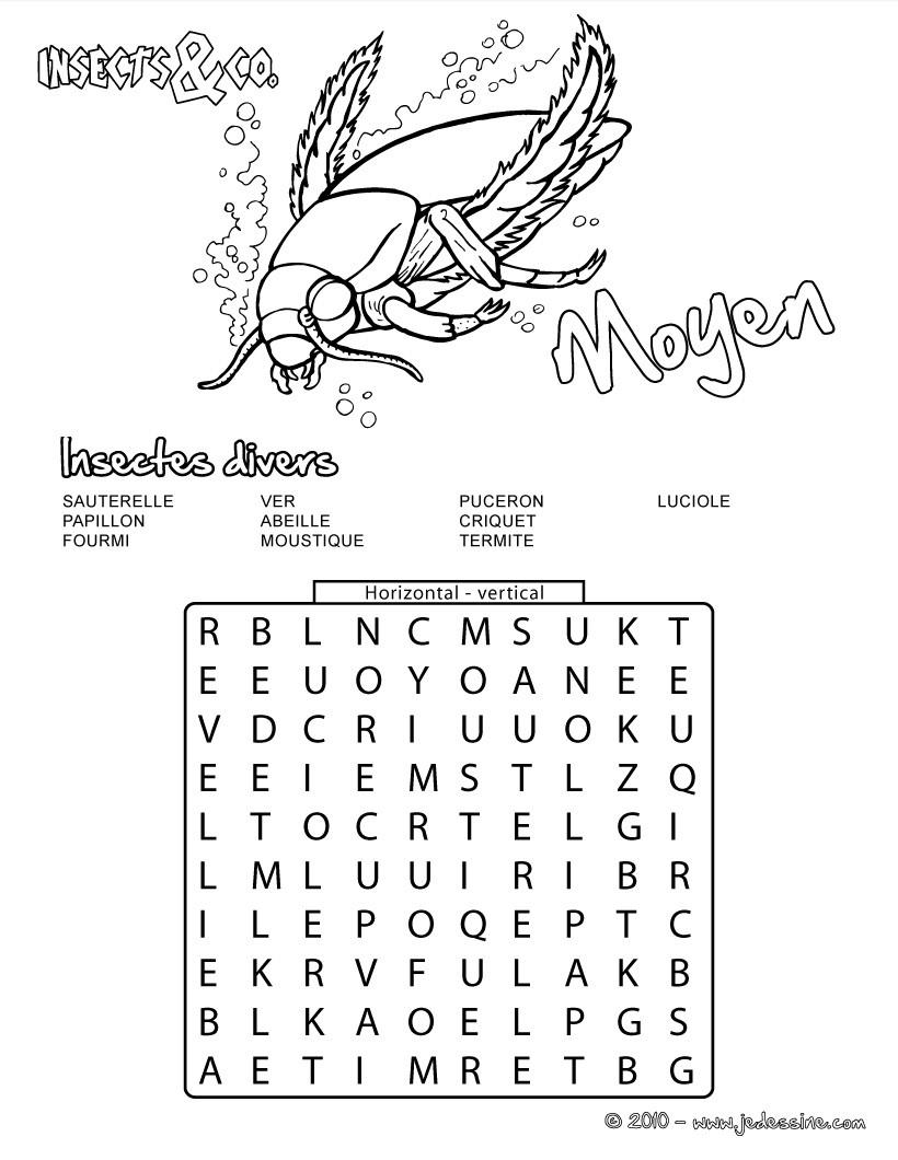 Jeux De Moyen : 15 Insectes Cachés - Fr.hellokids intérieur Jeux Des Mots Cachés